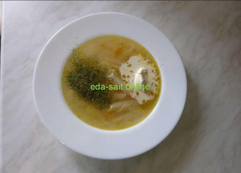 Легкий куриный суп с макаронами