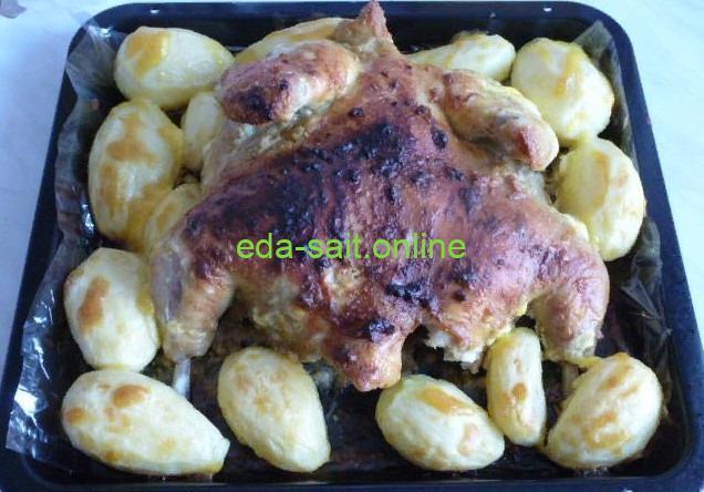 Запеченная курица с картошкой в духовке фото